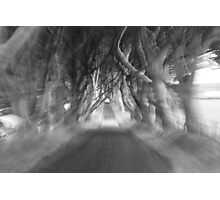 Dark Hedges Photographic Print