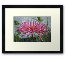 Pink Bark Framed Print