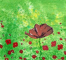 Italian Poppies #2 by Cath Sheard