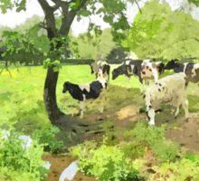 Grazing cows Sticker