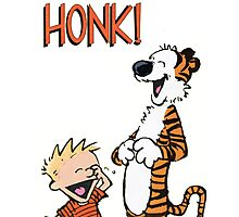 Calvin And Hobbes Comic Book Photographic Print