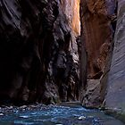 The Narrows by Carol Bock