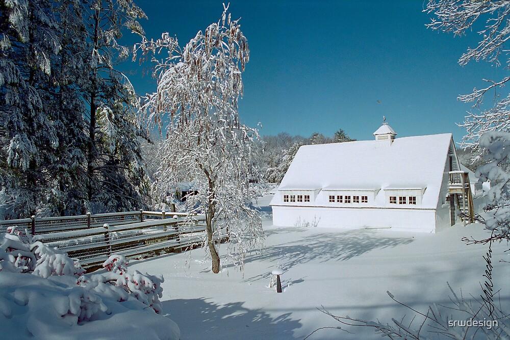 Winter Wonder by Susan R. Wacker