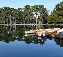 Lac du Bois de Boulogne by bubblehex08