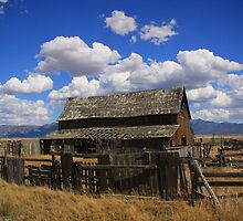 The Old Barn by Gene Praag