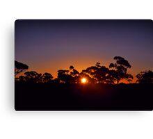 Kalgoorlie landscape sunset Canvas Print