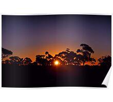 Kalgoorlie landscape sunset Poster