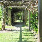 Fairchild Tropical Botanic Garden by Rosie Brown