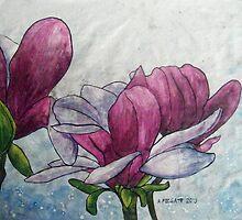 Magnolia II by Alexandra Felgate