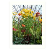 Glasshouse Flowers Art Print