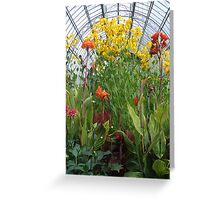 Glasshouse Flowers Greeting Card