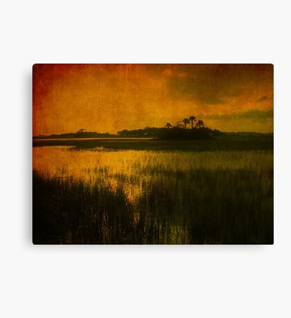 Island in the sun Canvas Print