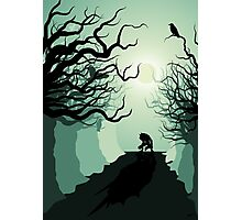 Crows and the Werewolf Photographic Print