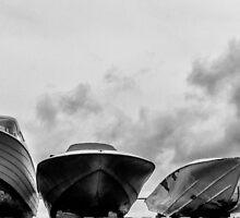 Got Boats? by John  Kapusta