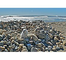 Where The Heck - In Rhode Island? Photographic Print