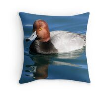 Redhead  Duck ~ Male II Throw Pillow