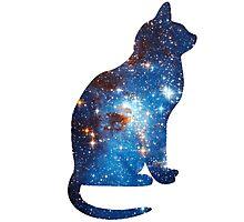 cosmic cat triangle  Photographic Print