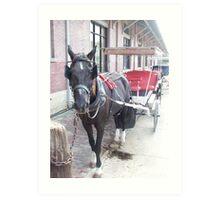 Natchez Carriage Rides Art Print