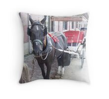 Natchez Carriage Rides Throw Pillow