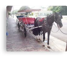 Natchez Carriage Rides - Natchez, Mississippi Metal Print