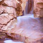 Streams in the Desert by Kim Barton