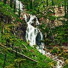 Steavensons Falls #3 by Jason Green