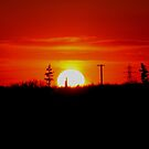 Manitoba Sunset by Larry Trupp