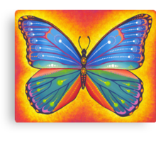 rainbow vibrant butterfly Canvas Print
