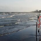 Evening at Galveston Beach by LarryB007