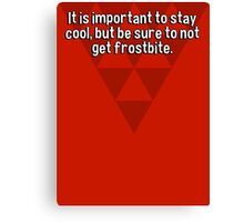 It is important to stay cool' but be sure to not get frostbite. Canvas Print