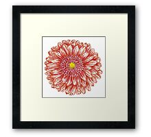 red Framed Print