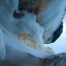 cliffs at bondi by Shauna Stannard