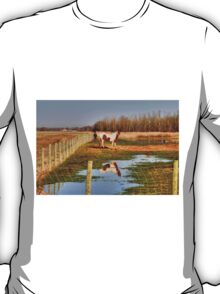 Pastoral View T-Shirt