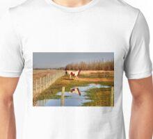 Pastoral View Unisex T-Shirt