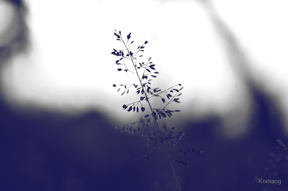 The Beauty Of Weeds #3 by Komang