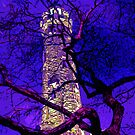 landmark chicago water tower by brian gregory