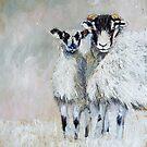 Ewes Looking at Me? by Sue Nichol