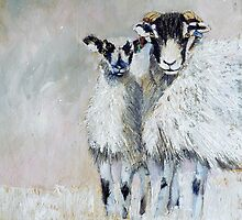 Ewes Looking at Me? by Sue Nichol