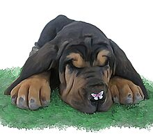 BloodHound puppy  by Cazzie Cathcart