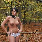 are bares shot in the woods? by jon  daly