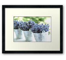 Lavender buckets Framed Print