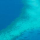 reef haze by Shauna Stannard