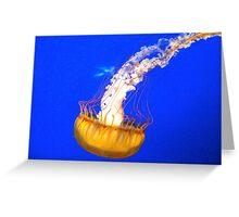 West Coast sea nettle Greeting Card