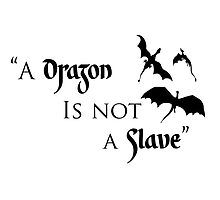 Game of Thrones - A Dragon is Not a Slave by DannyJeffrey