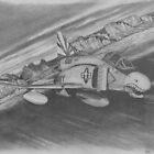 Desert Run by Tim Forhan