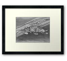 Desert Run Framed Print