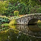 Stone Bridge Reflection by Chris  Randall