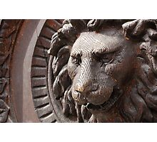 Wooden Lion Photographic Print