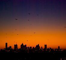 Melbourne Twilight by Frank Yuwono