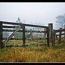 The Foggy Gateway by Mikey Thompson